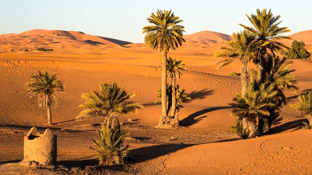 Santiago in the Sahara